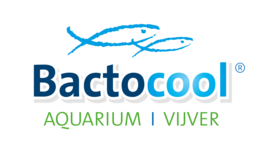 Logo Bactocool in Wondelgem