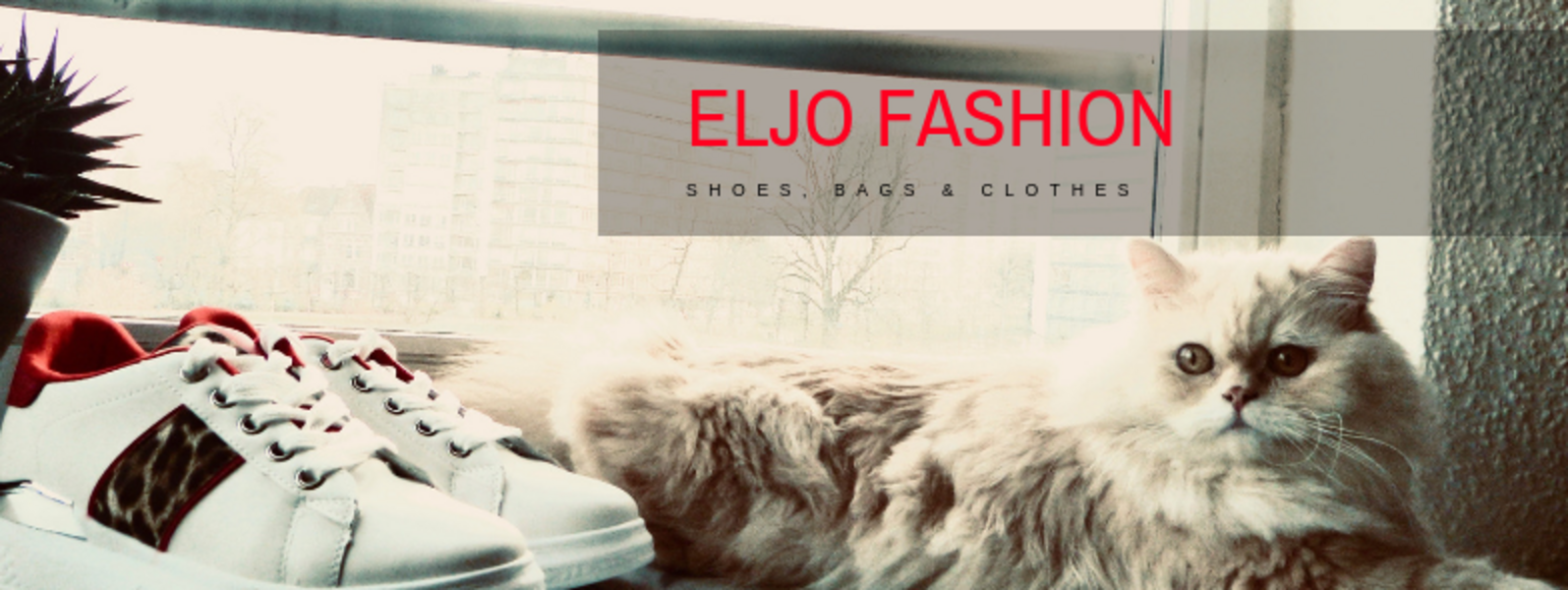 Header Eljo Fashion in Sint-Truiden
