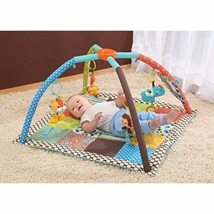 Speelkleed Large - 4 in 1 Milestones & Memories - Twist & Fold Gym