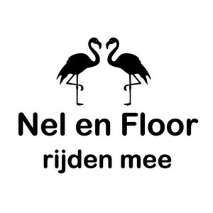 Autosticker Gepersonaliseerd flamingo