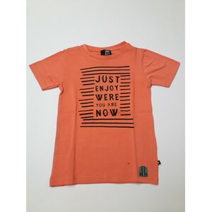 Coral t-shirt rumbl 116/122