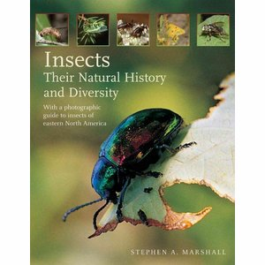 Boek Insects - Stephen A. Marshall