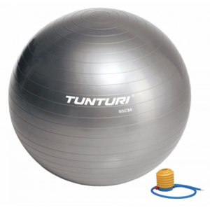 Tunturi Fitness Gym Ball 65 Silver