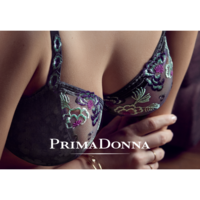 Prima Donna Bh Reeks Madame Butterfly Gris Gris 016/2730